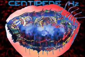 Recensione Animal Collective Centipede Hz