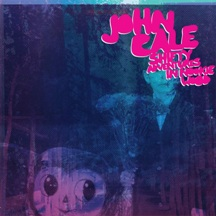 recensione john cale shifty adventures in nookie wood