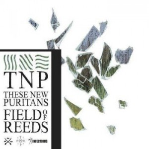 These New Puritans Field Of Reed Recensione