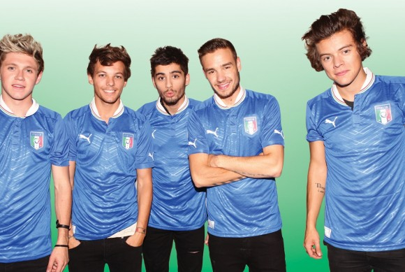 Concerto One Direction Milano San Siro 2014